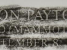 Don-Payton-Rubbing