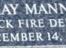 Ray-Mann-Plate